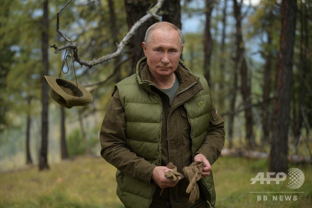プーチン氏、67歳に 誕生日にキノコ狩りの写真を公開