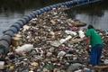 リオ五輪会場の湾は「巨大トイレ」、浄化作業進まず