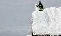 ドイツ各地で積雪、一面白銀の世界に