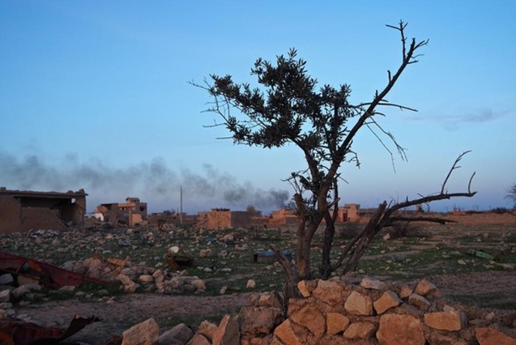 オリーブの消えた町 イラク・タルアファル、ISの爪痕