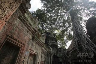 映画『キングスマン』カンボジアで上映禁止、「犯罪の温床」と描写