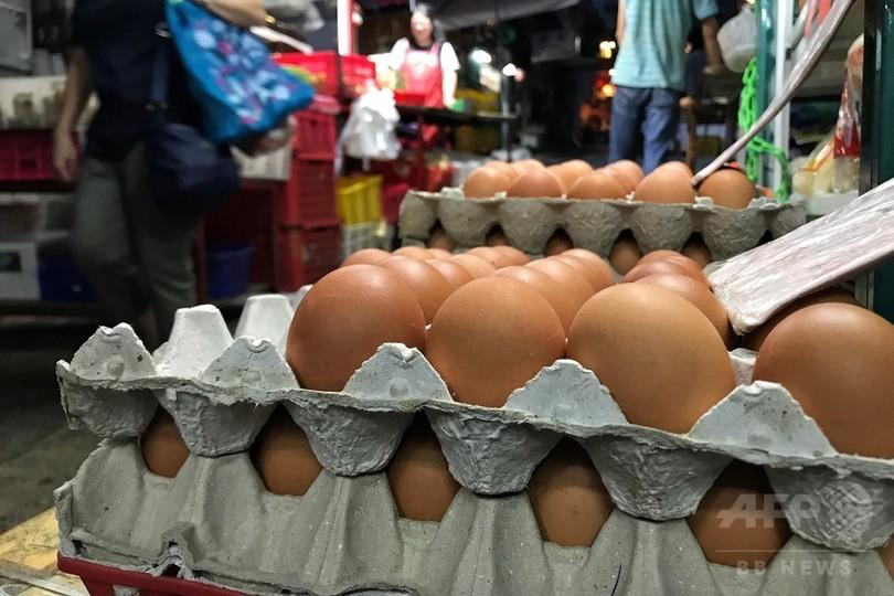 殺虫剤汚染の卵、香港でも発見 欧州から影響拡大