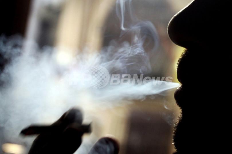 「常習的なタバコ喫煙は自殺願望と相関性」、独研究報告