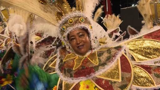 動画:リオのカーニバル2日目、きらびやかに夜を飾るパレード ハイライト映像