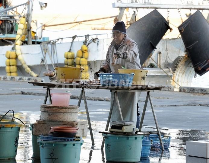 福島で水揚げのコウナゴに出荷停止と摂取制限