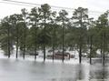 米南部でハリケーンの洪水被害拡大、ダム決壊の恐れも 死者15人に