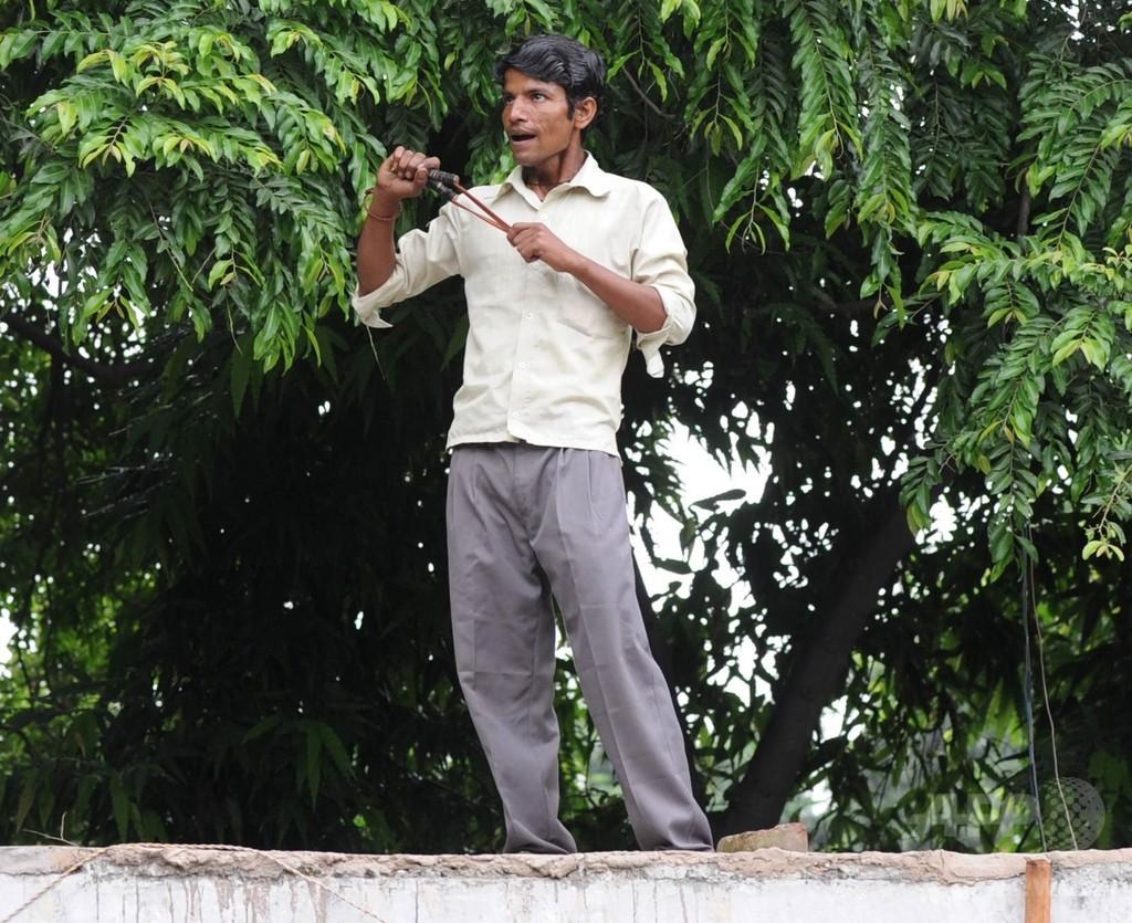 鳴きまねでサルを撃退「モンキーワラ」、効果てきめん インド