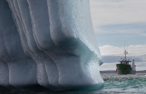 【今日の1枚】流氷は宝の山
