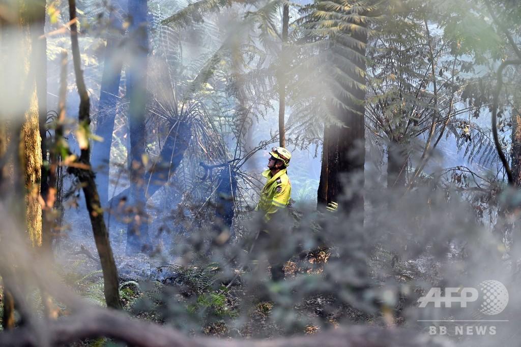 豪森林火災、ボランティア消防士に特別手当支給へ 豪首相