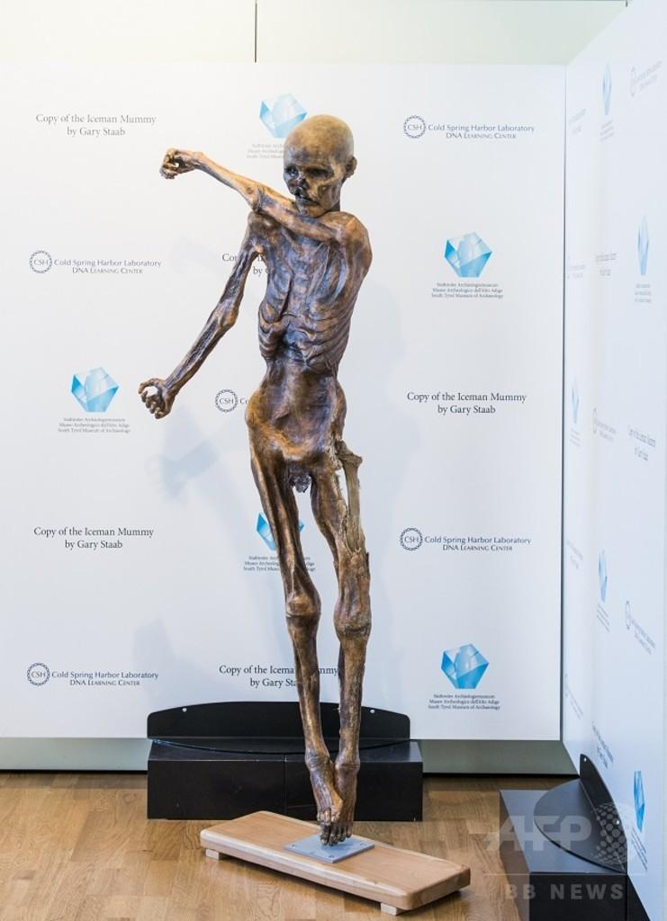 5000年前のミイラ「アイスマン」、3Dプリンターで複製