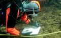 サンゴ礁に迫る消滅の危機、伊豆諸島式根島に保全のカギ