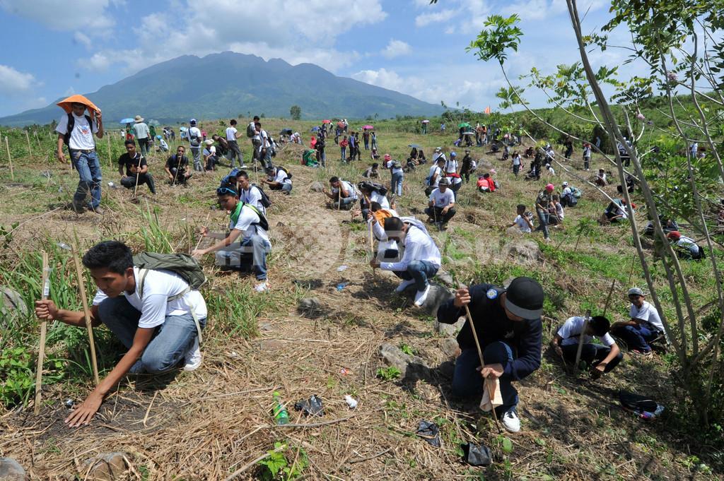 7000人で一斉植林、ギネス記録更新 フィリピン