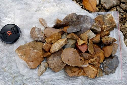 11万8000年以上前の石器発見、デニソワ人か インドネシア