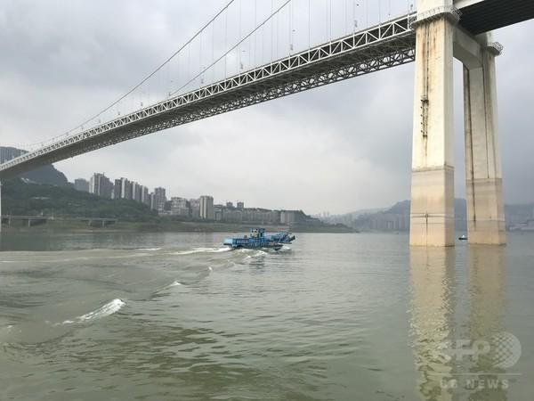 三峡ダム漂流物の「回収王」が見た長江生態環境の変化