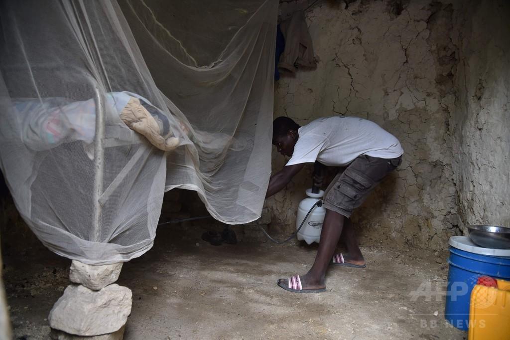 コレラ大流行のハイチ、10年以降80万人感染 資金不足問題も