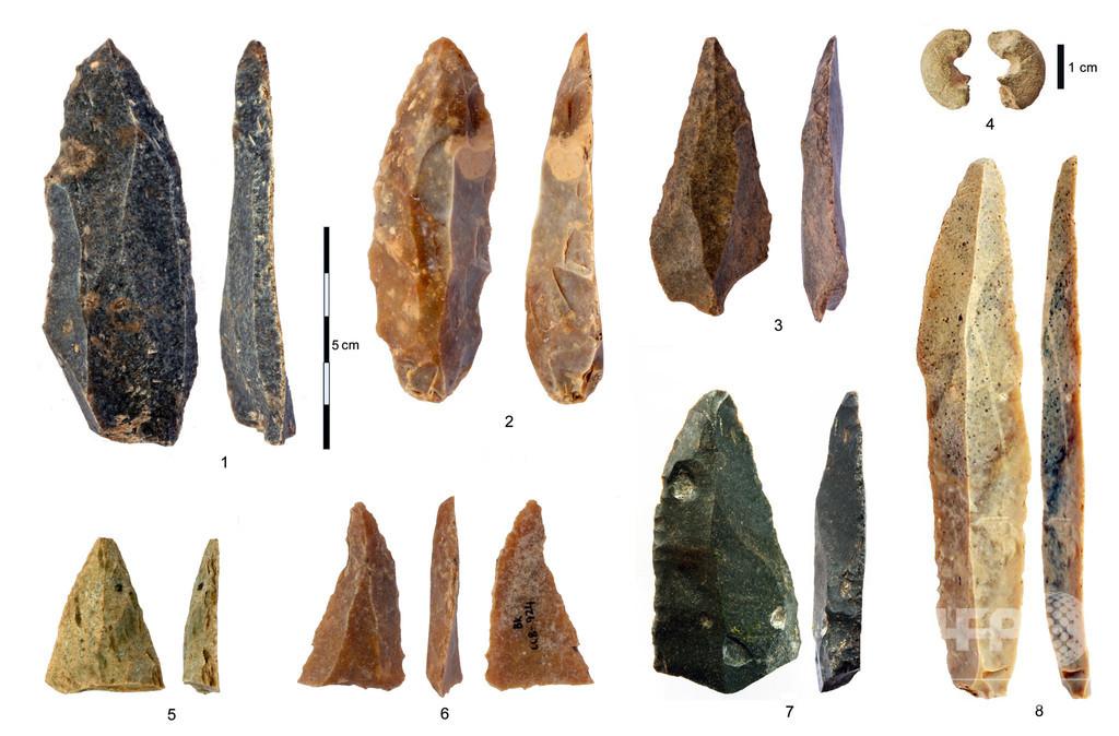 ブルガリア洞窟の骨と歯、欧州最古の現生人類と判明