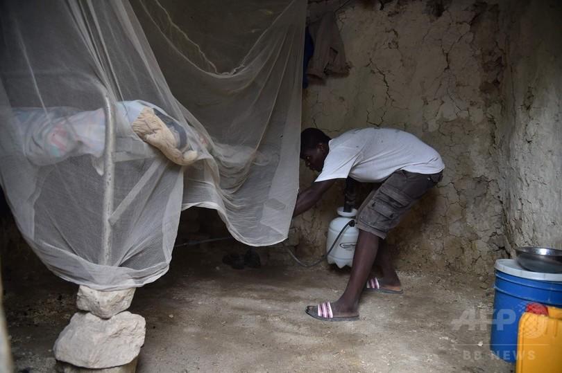 コレラ大流行のハイチ、10年以降...