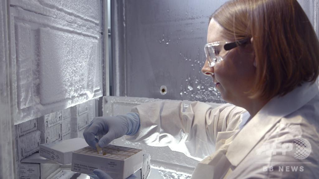 HIVの新種亜型を特定 19年ぶり 米研究