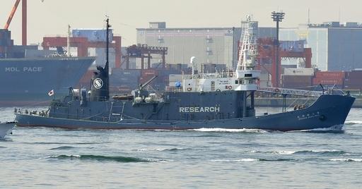 オーストラリア、調査捕鯨で日本をICJに提訴