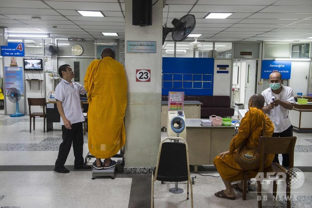 メタボに苦しむタイの僧侶、半数近くが肥満とのデータも