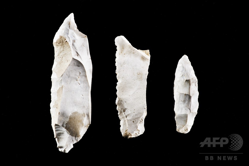 新石器時代に残虐な集団暴力行為、独で発見の人骨示唆 研究