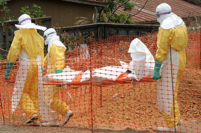 ギニアのエボラ出血熱、死者200人超に WHO発表