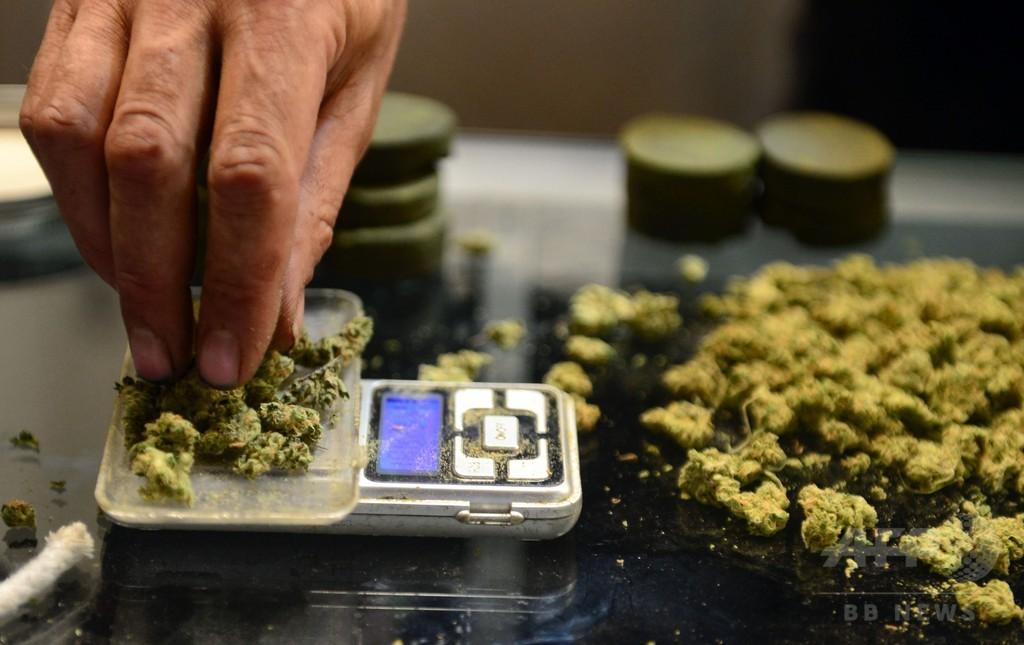 ドイツ、医療大麻を合法化へ 保健相が表明