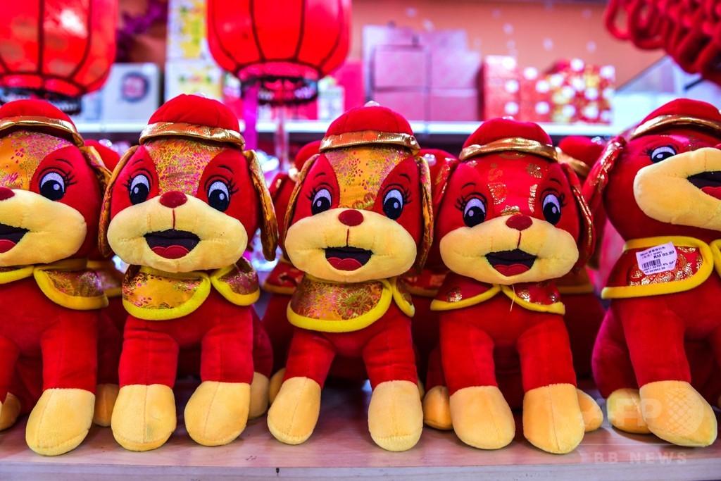 「不浄な」犬の置物は店内に 戌年の春節迎えるイスラム教国マレーシア
