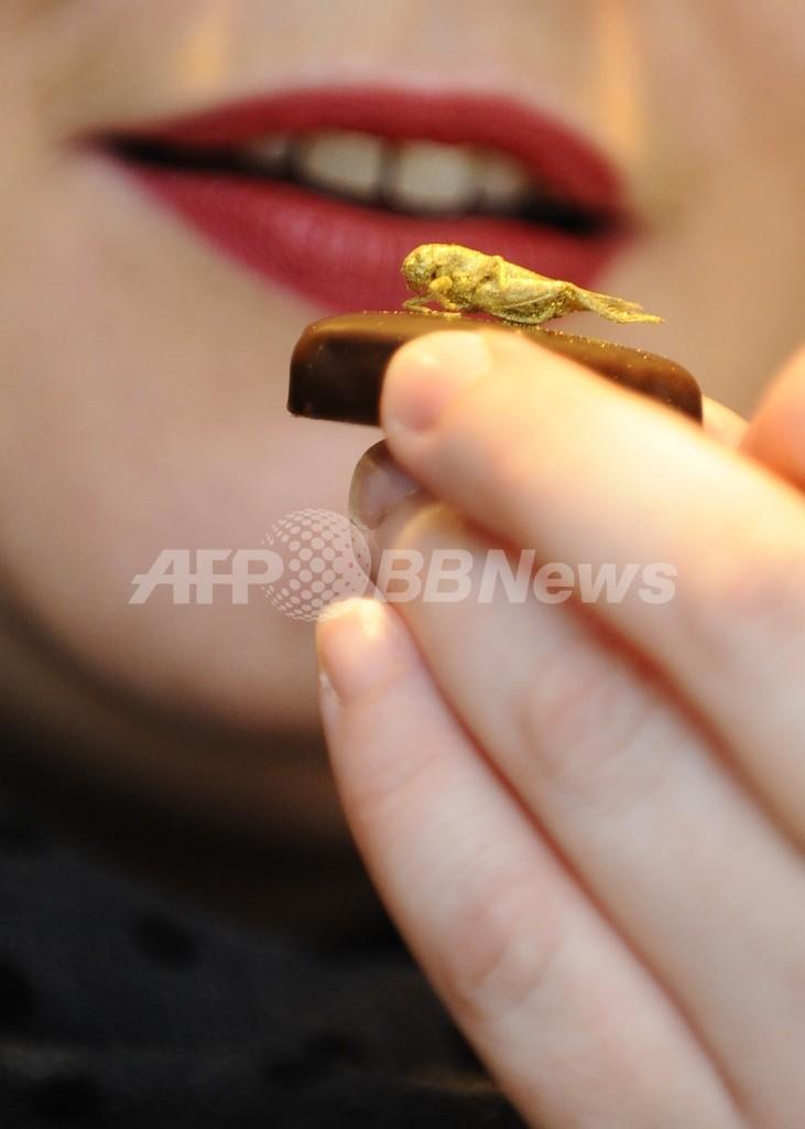 新作チョコの上には金色に輝く…昆虫、アイデアは日本発?フランス