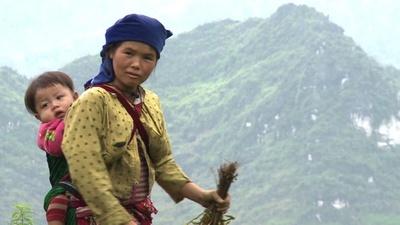 動画:少数民モン、民族の遺産を守る闘い ベトナム