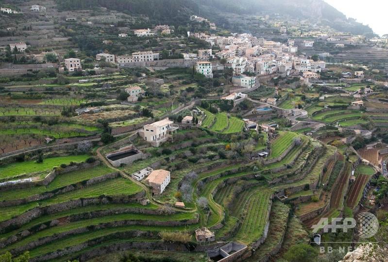一面に広がる段々畑の石垣、しっくいを使わない特殊手法 スペイン・マヨルカ島