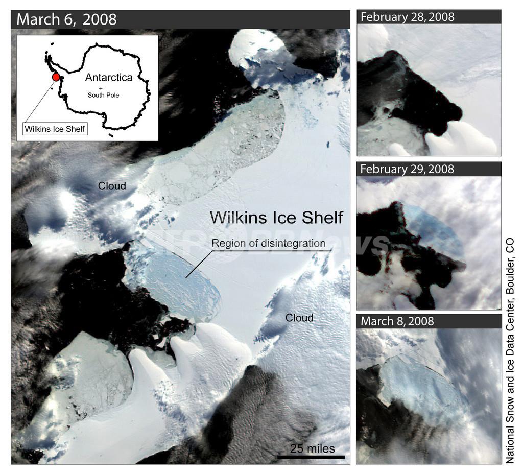 南極ウィルキンス棚氷、温暖化で大規模崩壊が進む