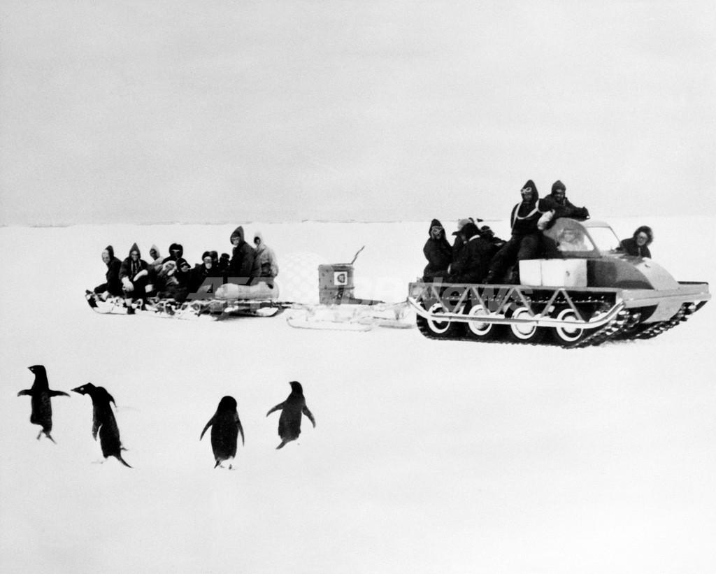 ペンギンの「性的堕落」に戦慄、100年前の南極探検隊員 英研究