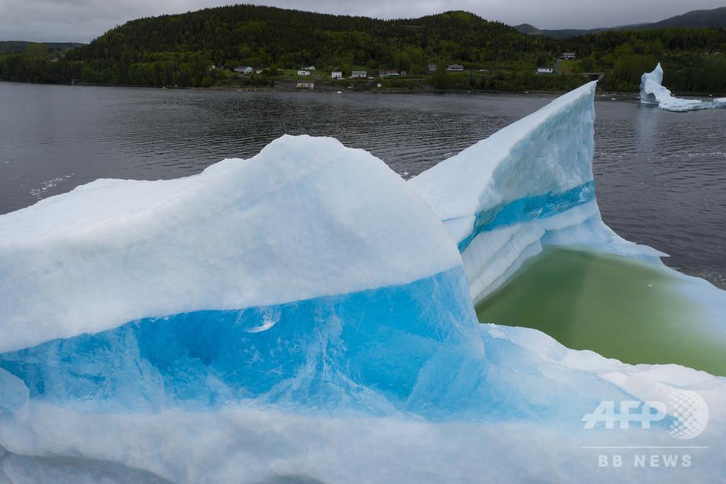 地球温暖化を追い風に、カナダの流氷ハンター