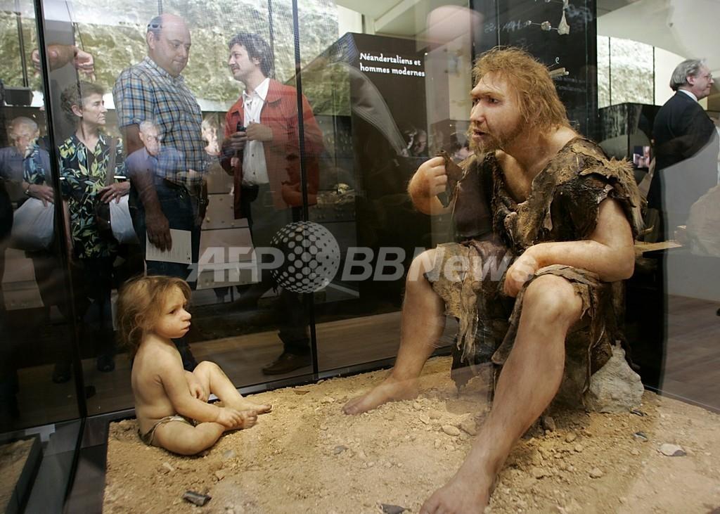 ネアンデルタール人はしゃべった?化石から喉頭模型を作成