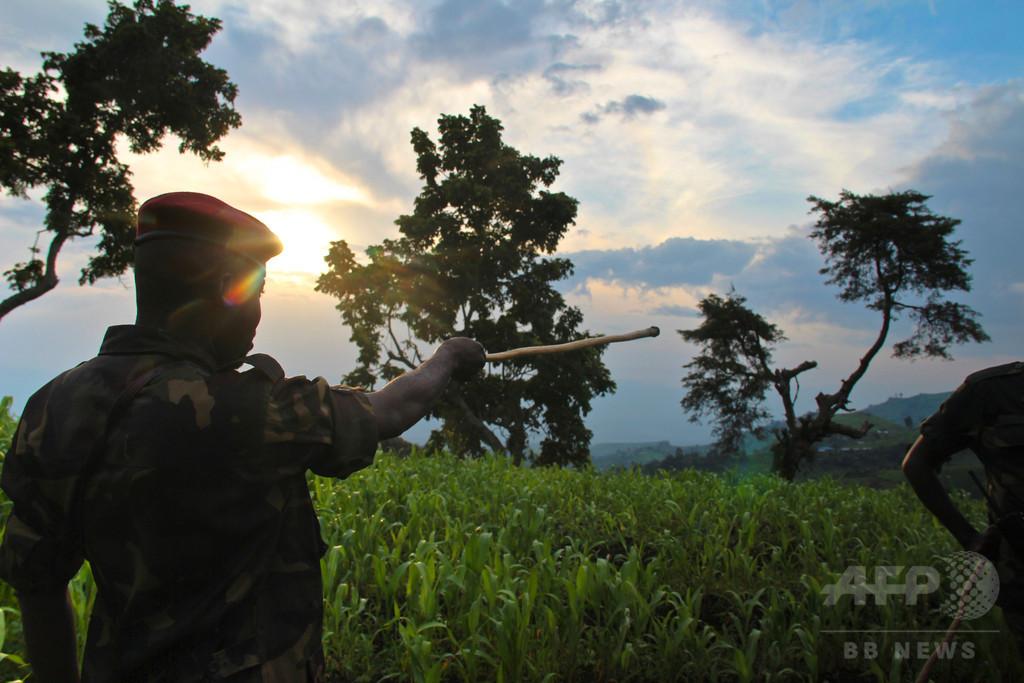 生後8か月の乳児含む約40人レイプ、民兵11人に終身刑 コンゴ
