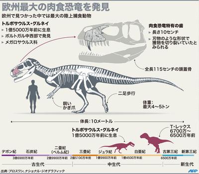 欧州最大の肉食恐竜、ポルトガルで化石発見
