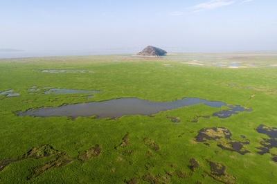 湖が見渡す限りの草原に 中国最大の淡水湖「ハ陽湖」が渇水期