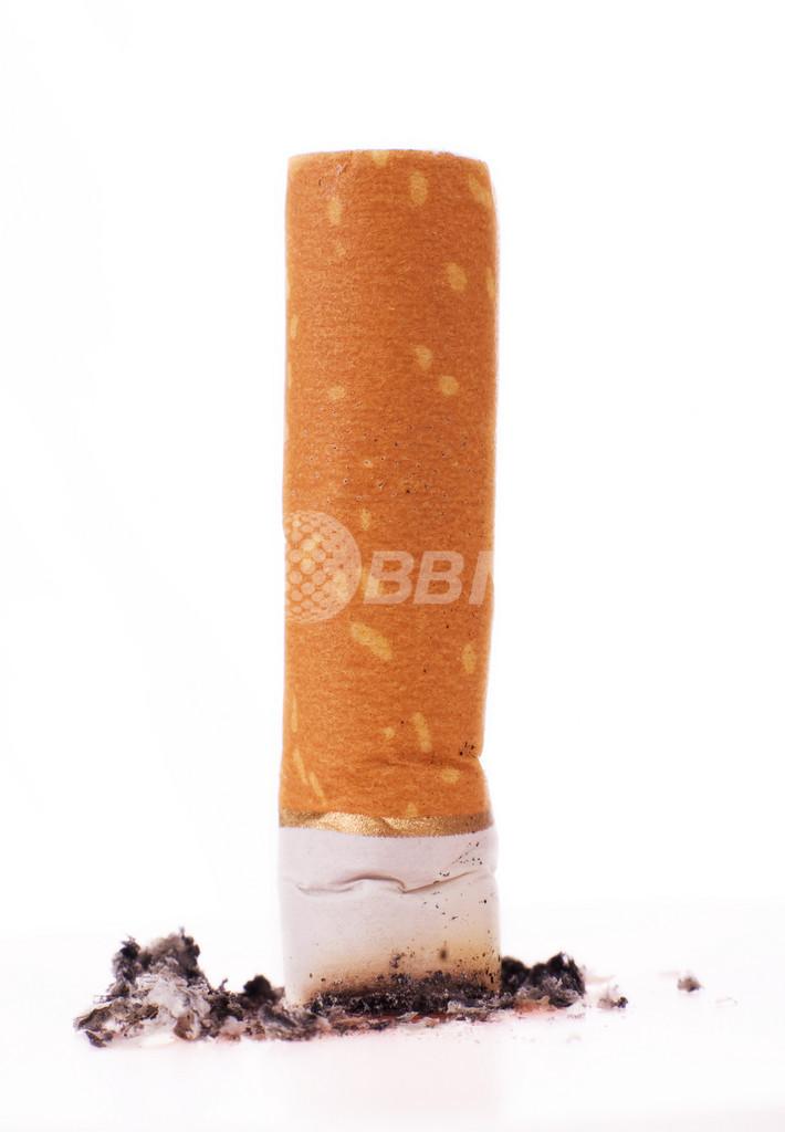 禁煙すると記憶力がアップする、英研究