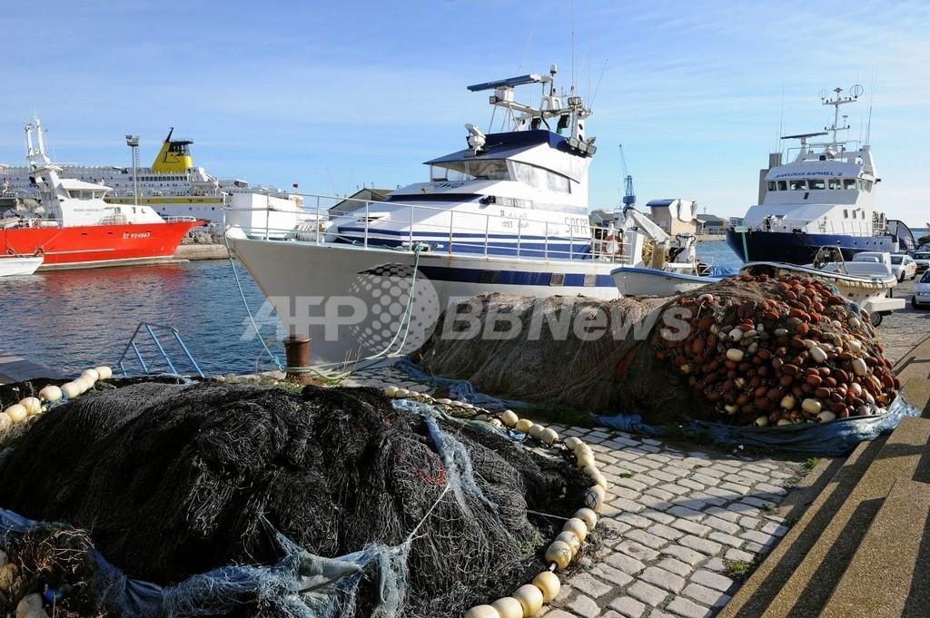 EU漁業補助金、乱獲の一因に 研究