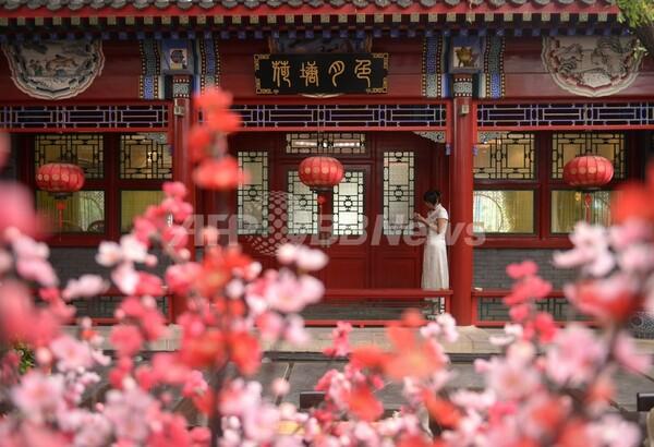 食事代申告制レストラン、大幅赤字に 中国
