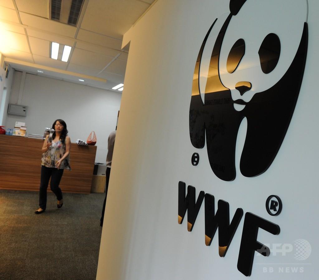 世界の野生動物、過去40年で半減 WWF発表