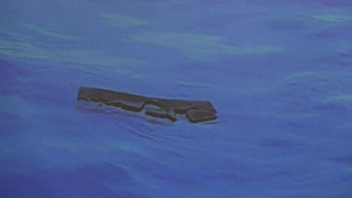 動画:不明のチリ空軍機、海上で遺体や残骸見つかる