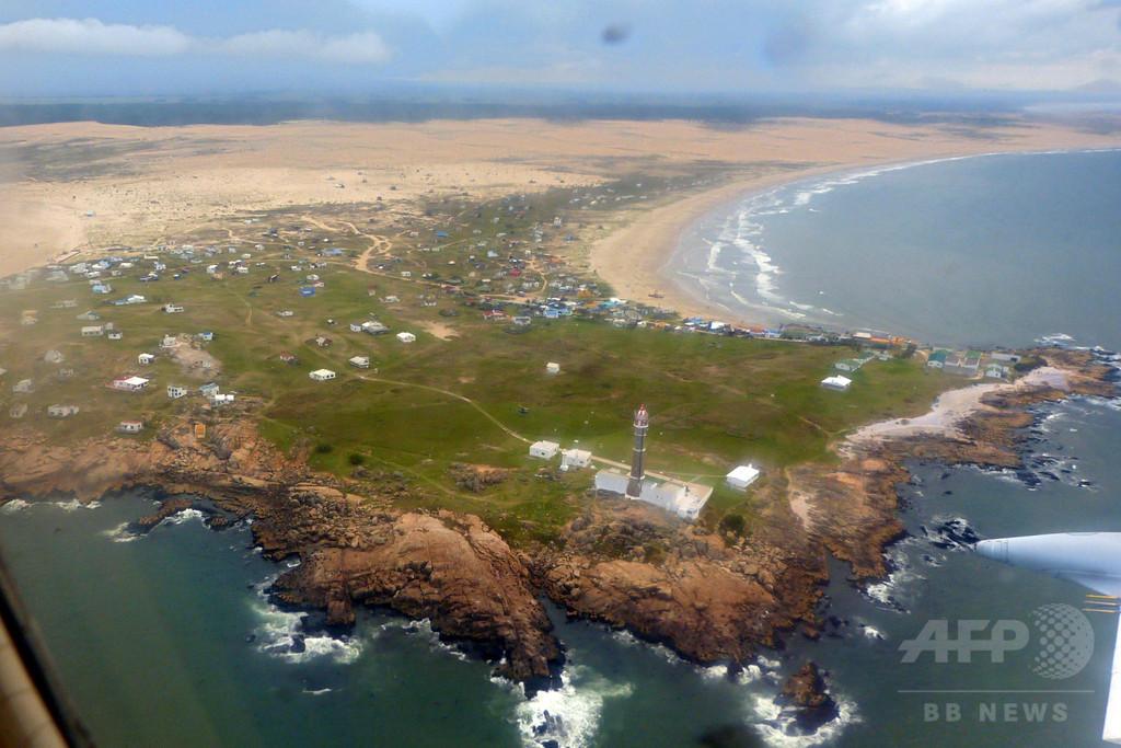 ウルグアイ海岸にペンギン死骸、3日間で数十羽打ち上げ