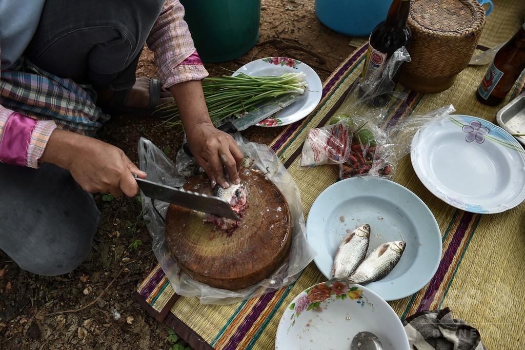 昼食の生魚料理が肝がんの原因に、地元の食習慣と闘う医師 タイ