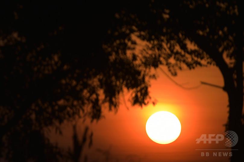 地球の生命誕生、若年期太陽の爆発現象が引き金か 研究