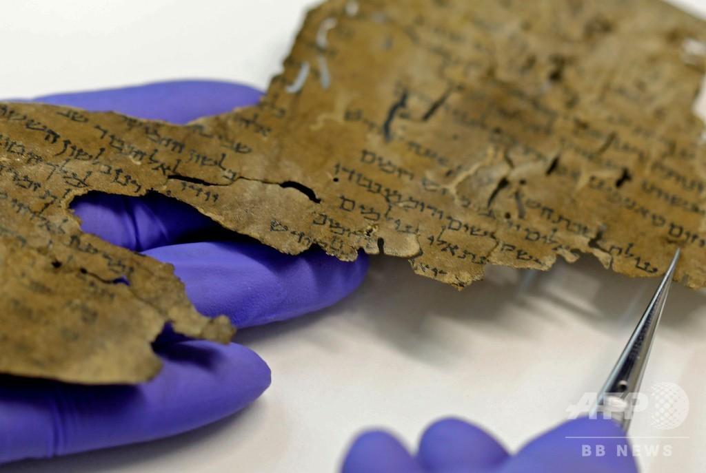 死海文書の由来 「羊皮紙」のDNA調査で謎深まる