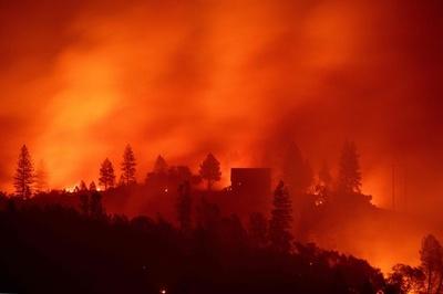 米加州の森林火災、町の再建「欧州的アプローチ」で 専門家