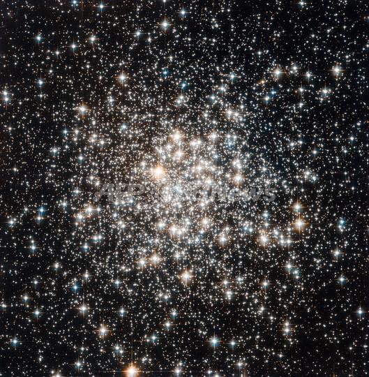 「4つの太陽を持つ惑星」、アマチュア天文家が発見