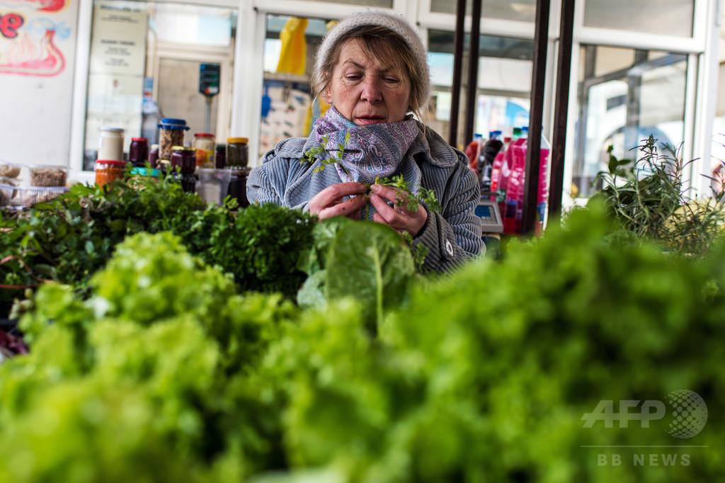 日々の葉物野菜摂取で記憶力低下を抑制か、研究